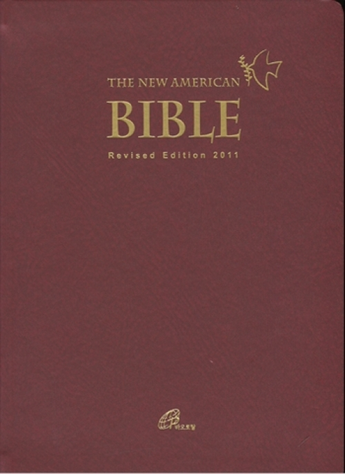 THE NEW AMERICAN BIBLE (대) / pauline